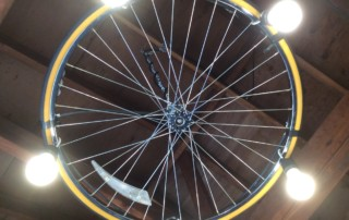 Wheely Good Bike Shop | Custom Light